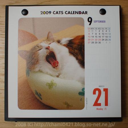 猫めくり2009 9月21日